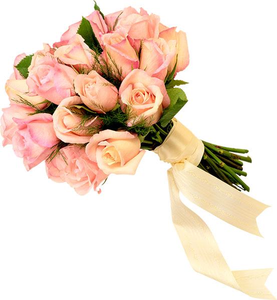 Hosteria san Felipe flores